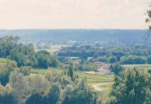 La combe du Château Laroque
